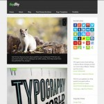 15 Top & Latest Tumblr Style WordPress Themes