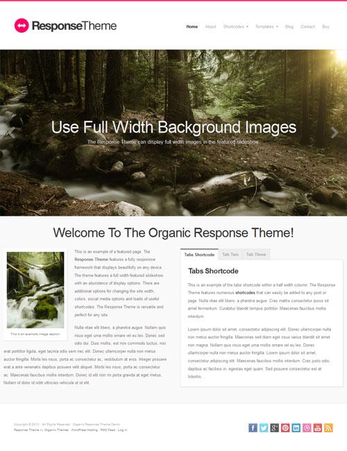 response wordpress theme