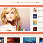 High Quality Cheap Premium WordPress Themes