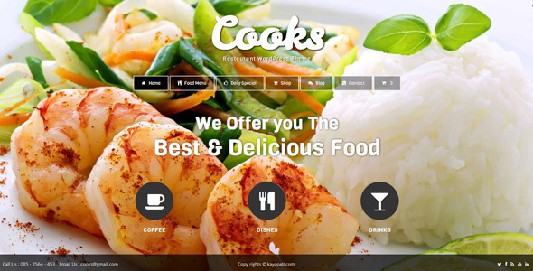 cooks wordpress theme