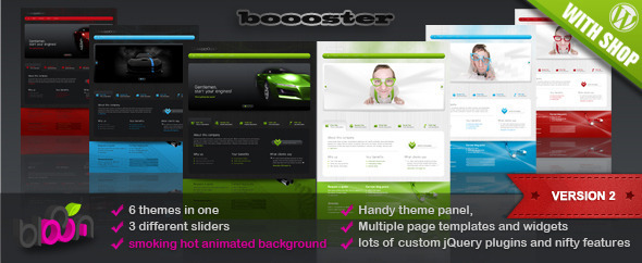 booster-wordpress-theme