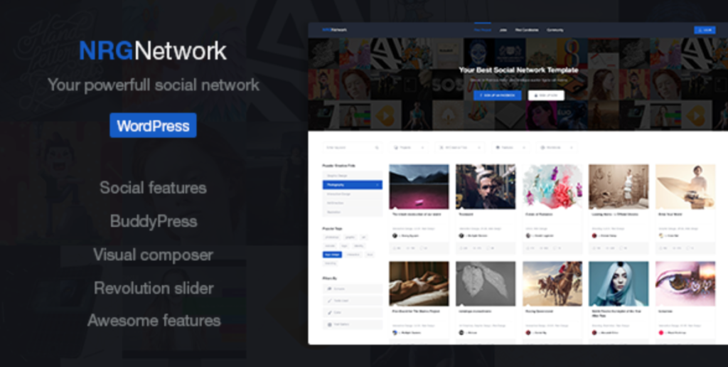 nrgnetwork social network wordpress theme