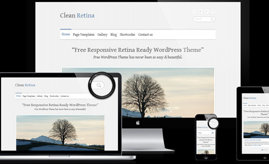 clean-retina
