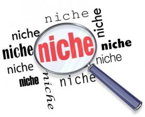 make money with niche sites