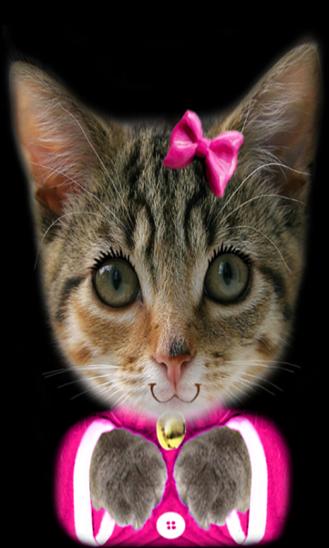 talking-kitty