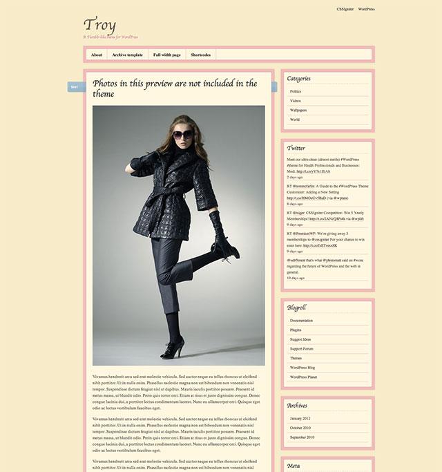 troy tumblr wordpress theme