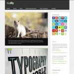 15 Top & Latest Tumblr Style WordPress Themes
